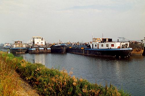 Een heel rijtje Van Ommeren gerelateerde schepen in de voormalige Insteekhaven van Moerdijk; wachtend op de slopershamer.
