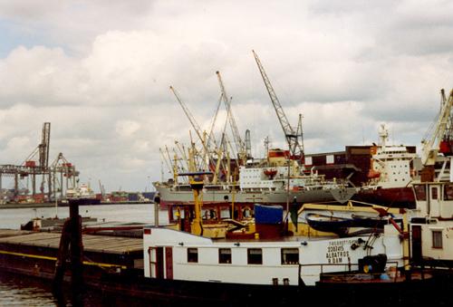 Het motorvrachtschip ALBATROS (ex. ARABIA), in de Waalhaven in Rotterdam. Foto: N. J. van der Meer - met dank.